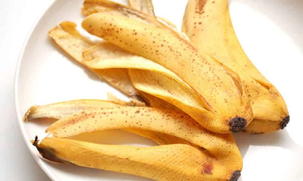 6 usos da casca de banana que você JAMAIS imaginou