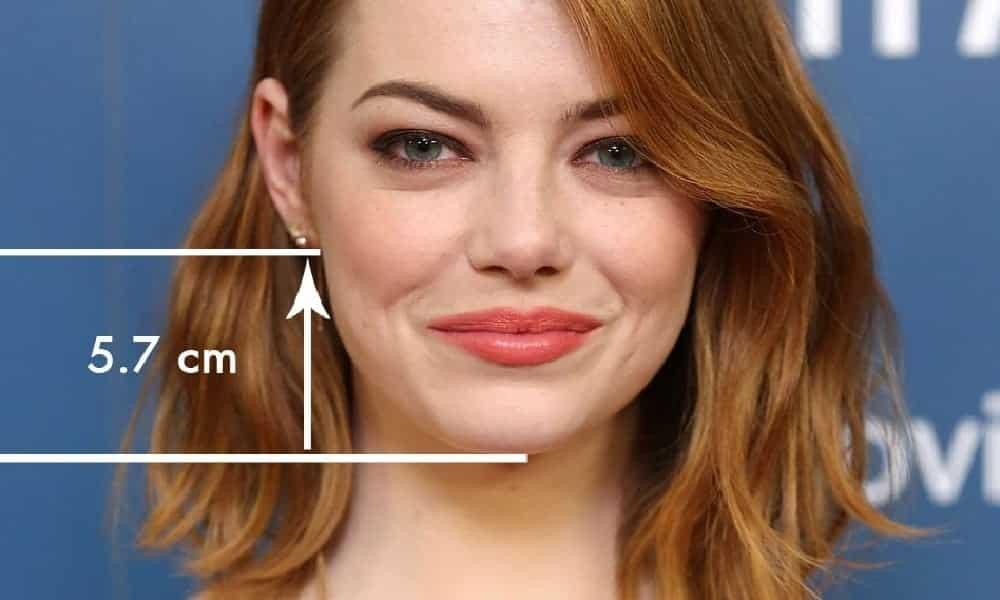Você ficaria bem de cabelo curto? Faça o teste