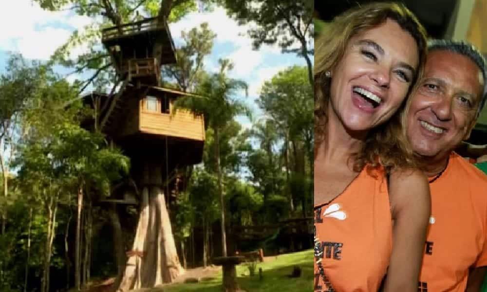 Conheça a casa da árvore de Galvão Bueno