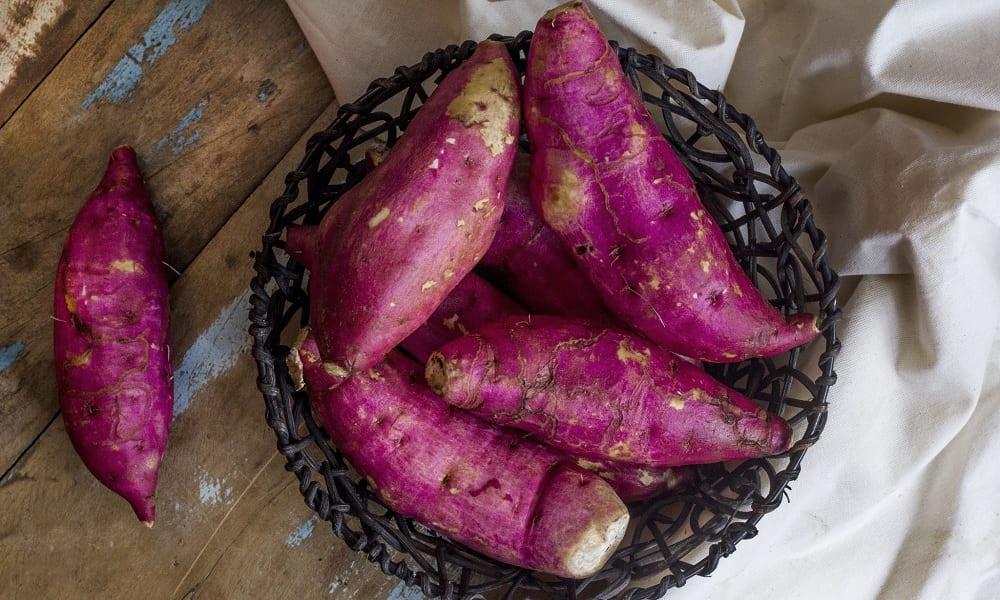 O que acontece com seu corpo se você comer batata-doce regularmente