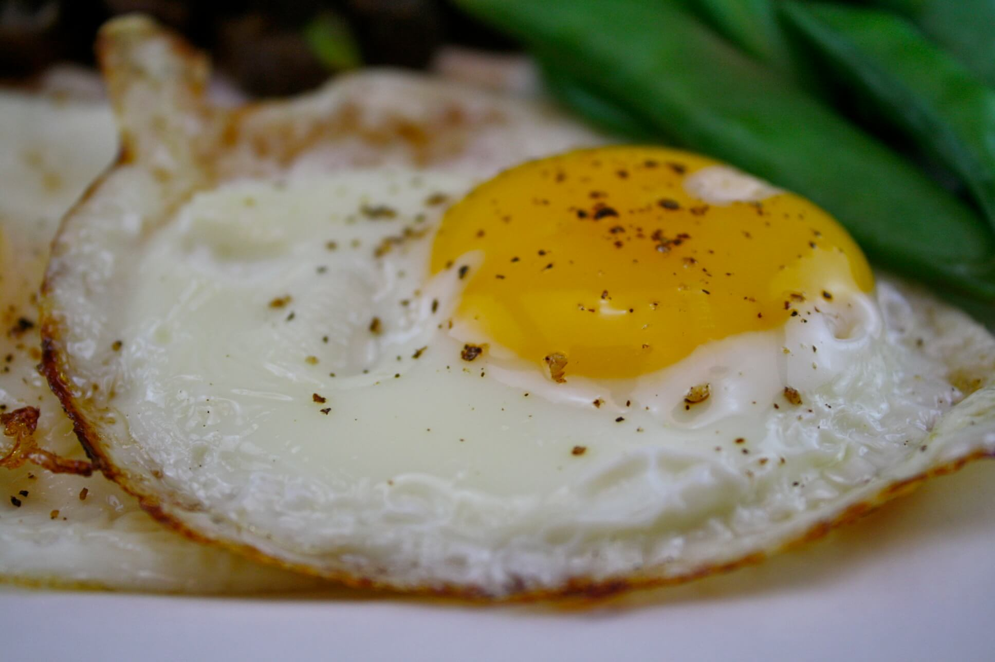 Como fazer ovo frito sem leo usando apenas gua - Calorias boquerones en vinagre ...