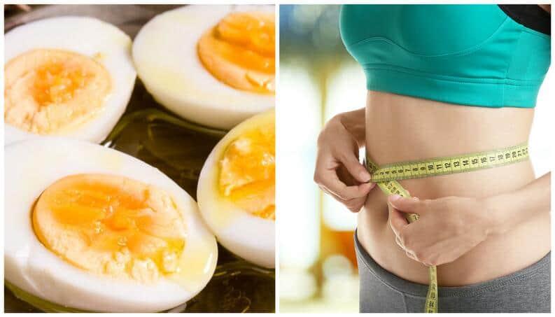 Dieta do ovo: Cardápio para eliminar até 14 quilos em 10 dias