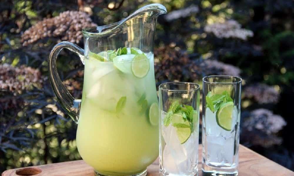 Beber água gelada com limão pode te ajudar a perder 8 quilos