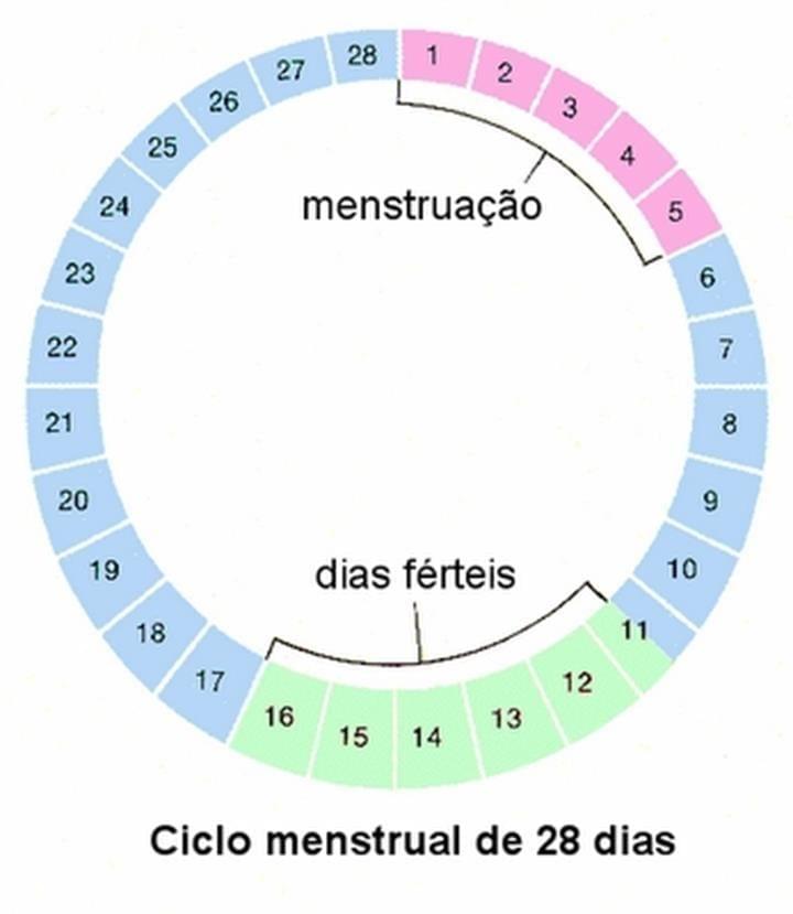 Como engravidar de menino: 11 dicas e simpatias para conseguir de 1ª