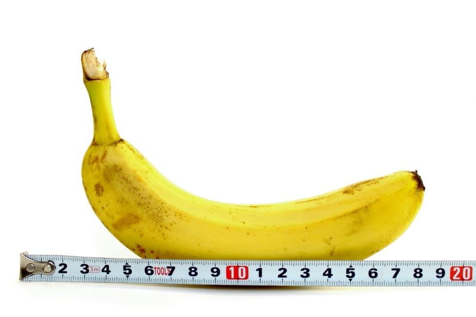 Maior pênis do mundo é de um mexicano e tem quase meio metro de comprimento