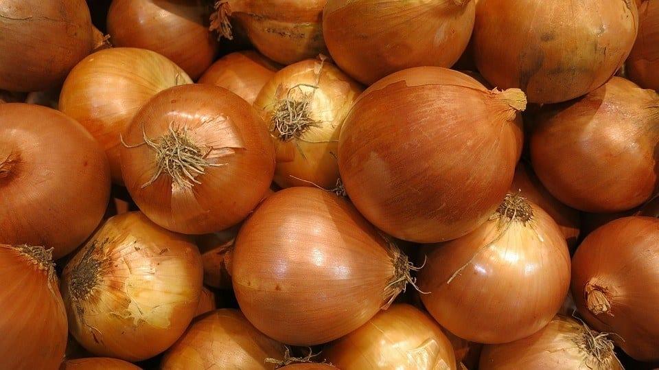 Aprenda quais os tipos de cebola ideais para cada prato