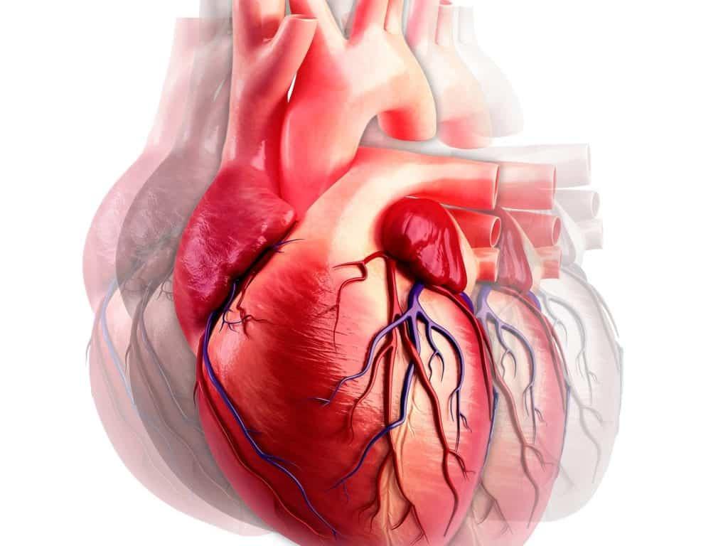 Quais são os sintomas de um ataque cardíaco em uma mulher