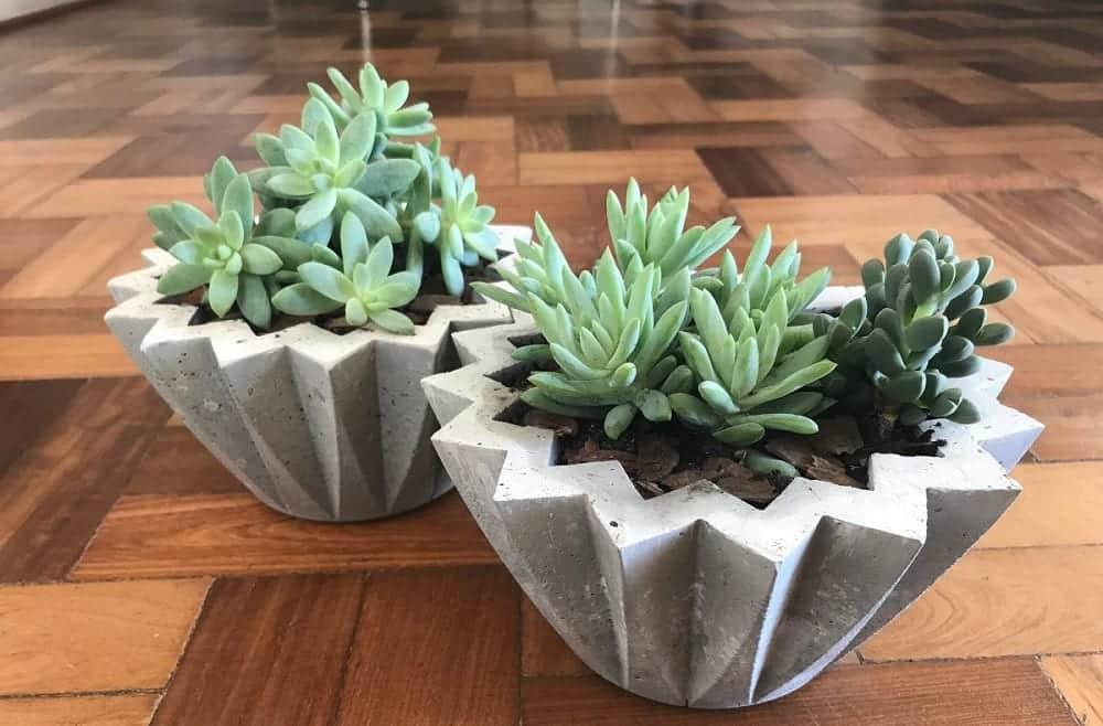 Vaso de cimento - como fazer, como usá-lo na decoração e inspirações