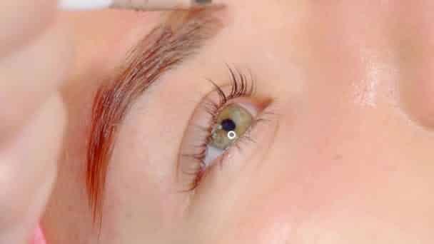 Conheça os vários tipos de pigmentação de sobrancelhas