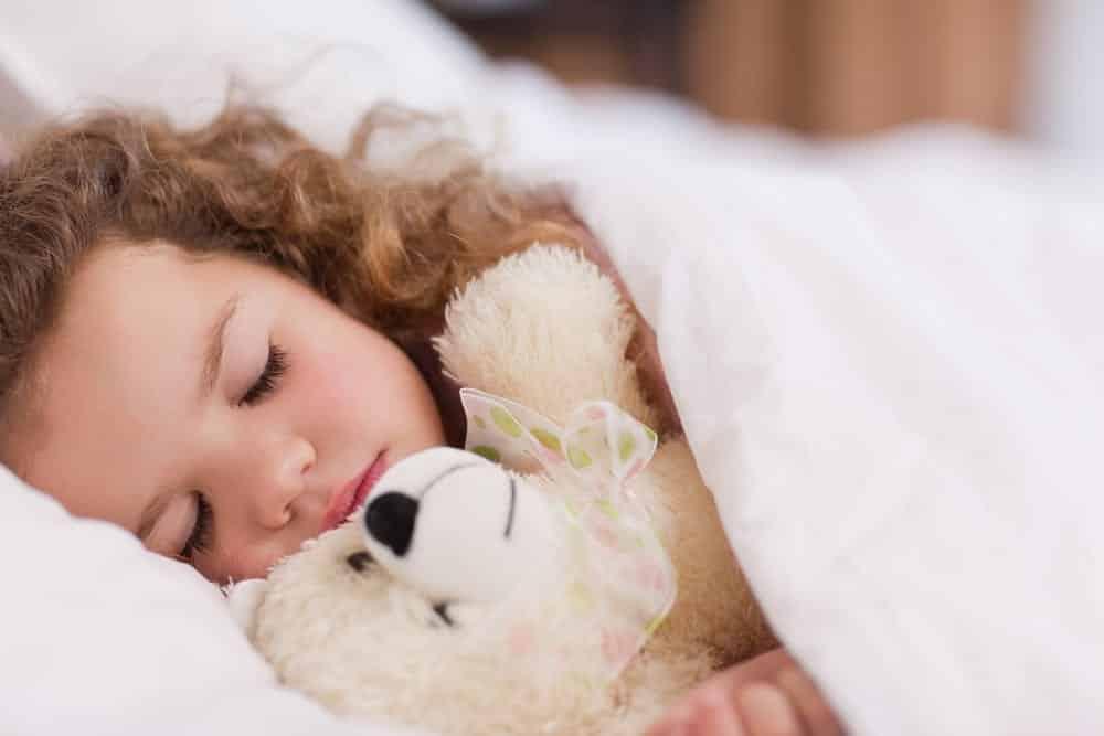 Descubra como surgiu o ursinho de pelúcia e porque são importantes