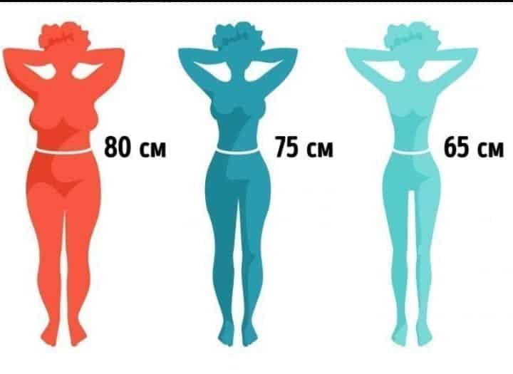 grandi affari nuove immagini di nuovo stile Cintura fina, como afinar a cintura com 5 exercícios