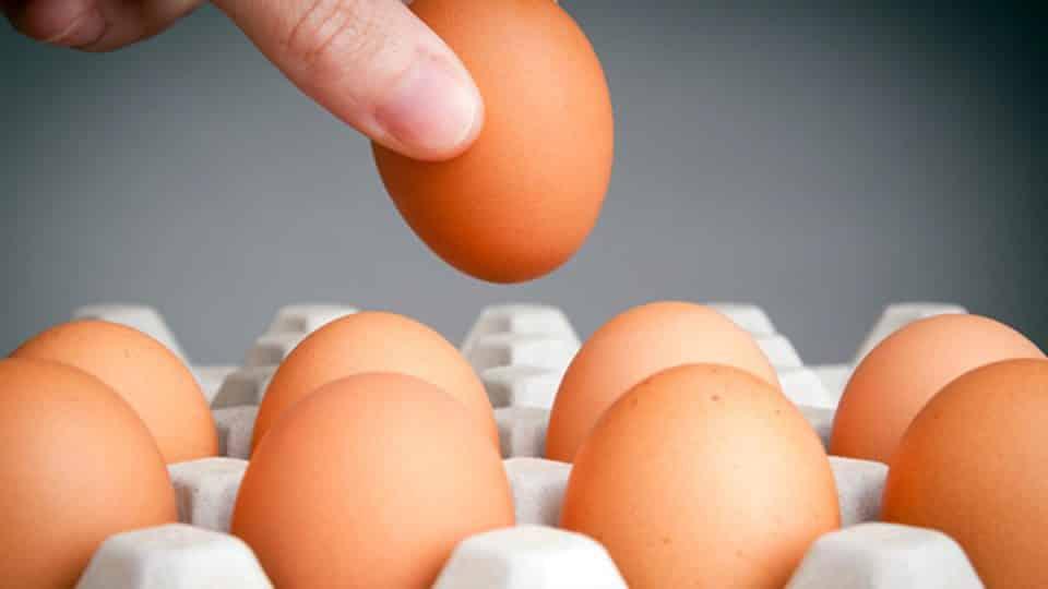 Quantas calorias tem um ovo? Valor energético e nutrientes do alimento