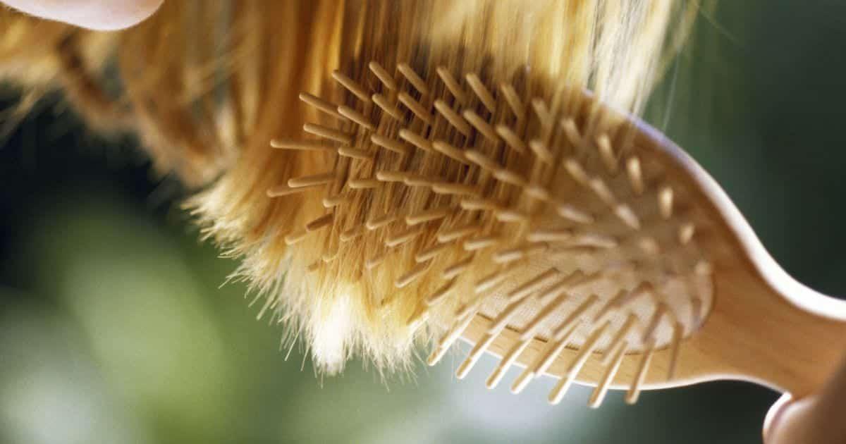 Escova de cabelo - Tipos, cerdas e qual a melhor para o seu cabelo