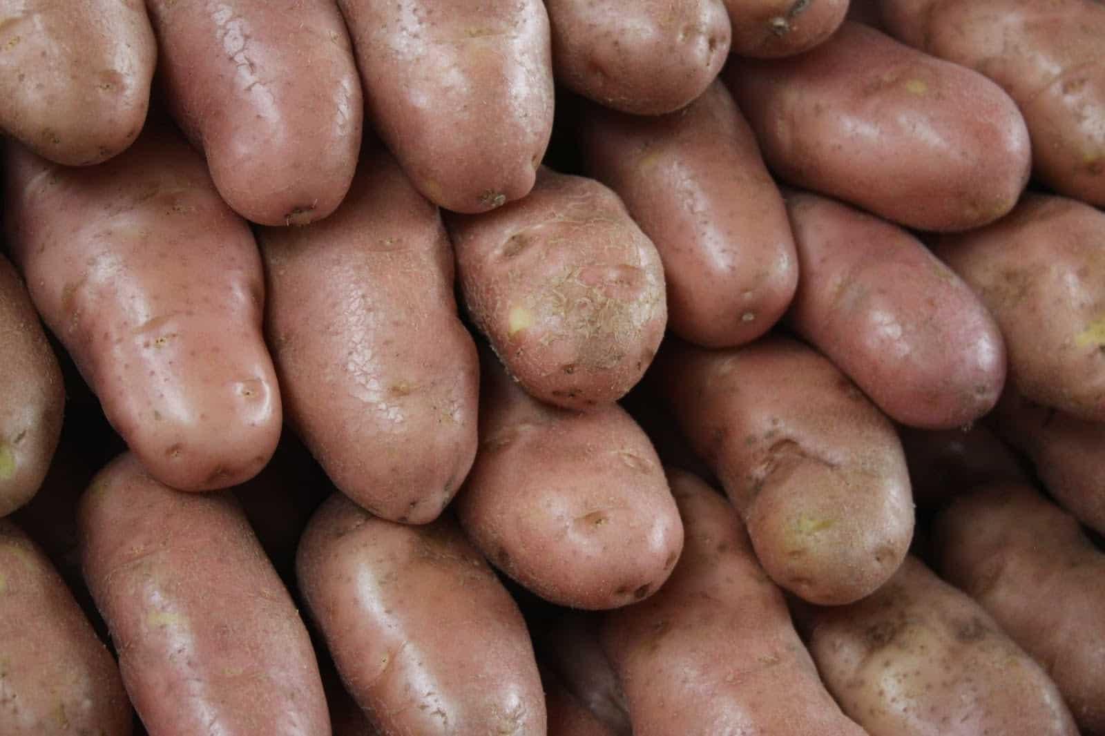 Batata asterix - o que é + como fritar de um jeito que ela fique crocante