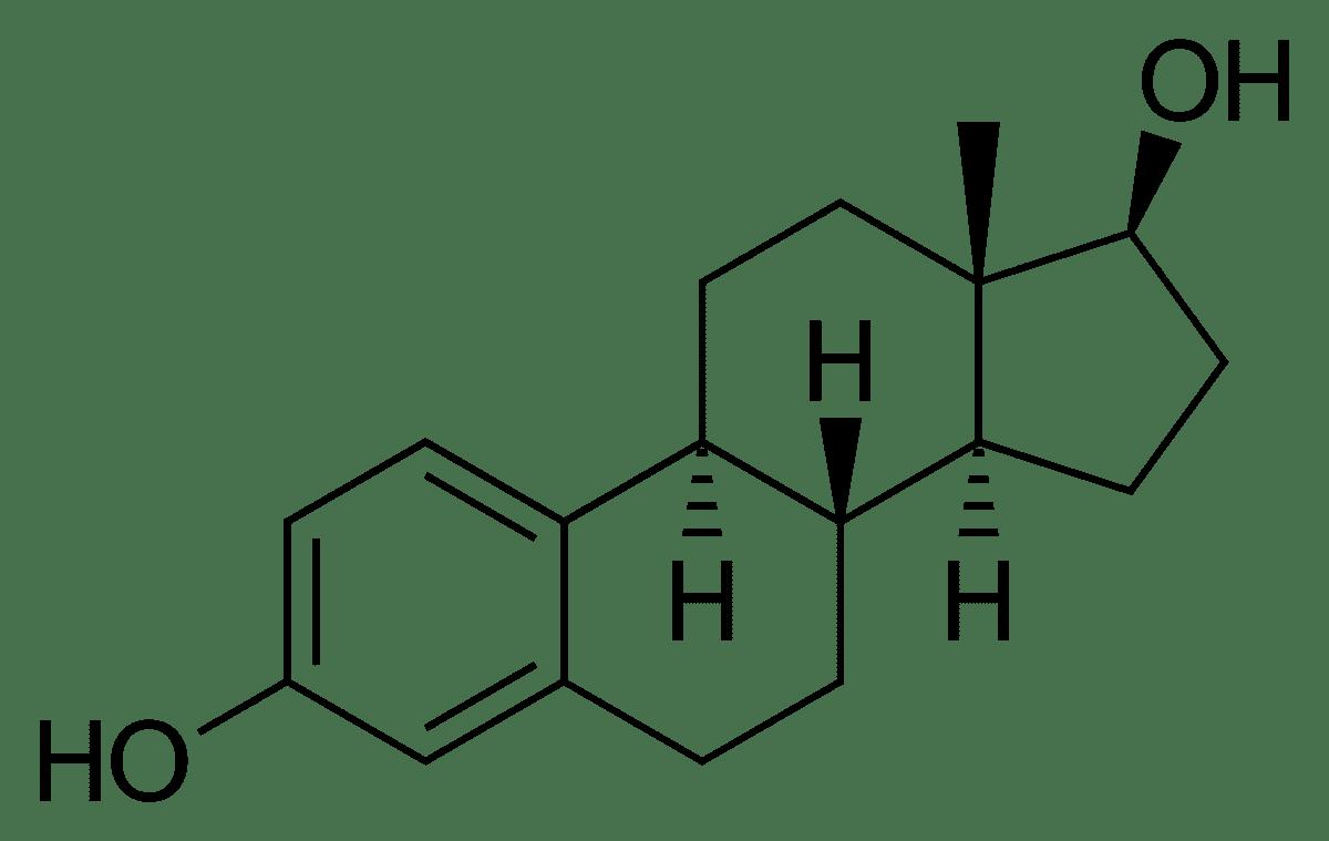 Estrogênio - tudo o que você precisa saber sobre o hormônio feminino