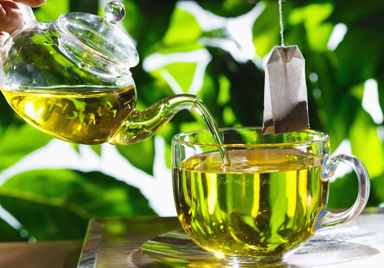 Chá verde - O que é, como consumir e principais benefícios