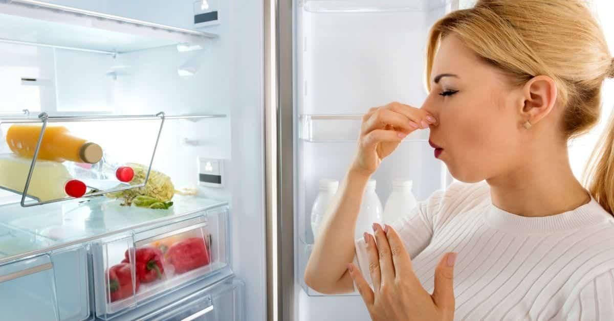 Mau cheiro na geladeira - Causas e dicas para tirar o odor