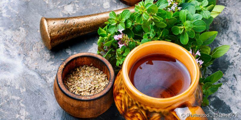 Chás para descer a menstruação – 6 melhores chás e por que funcionam