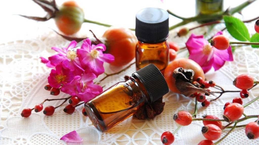 Óleo de rosa mosqueta – O que é, benefícios, como usar e receitas