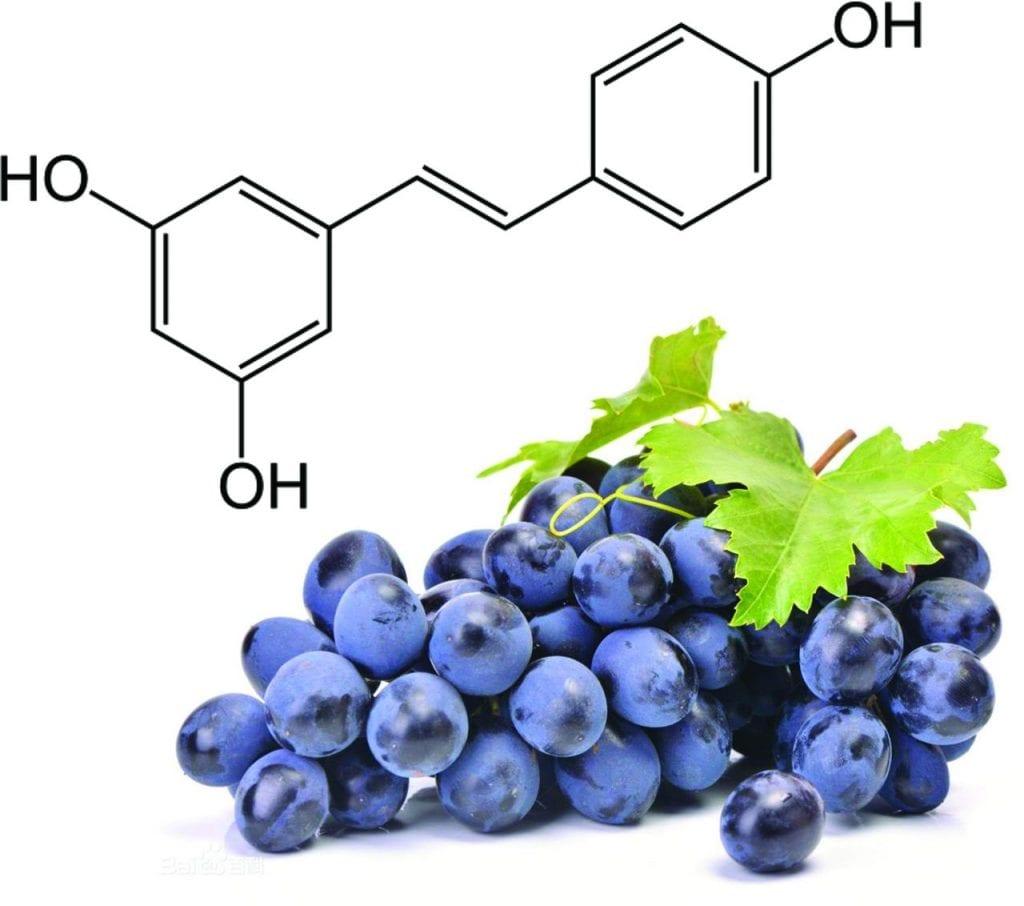 Resveratrol – O que é, benefícios para a pele e como consumir