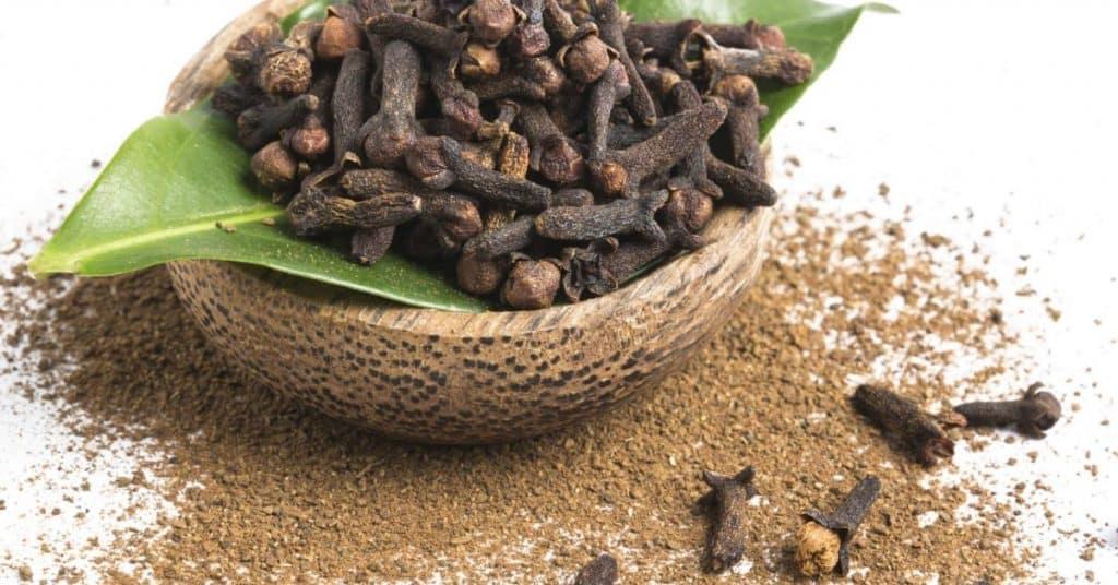 Cravo-da-índia – O que é, benefícios, como usar e contraindicações