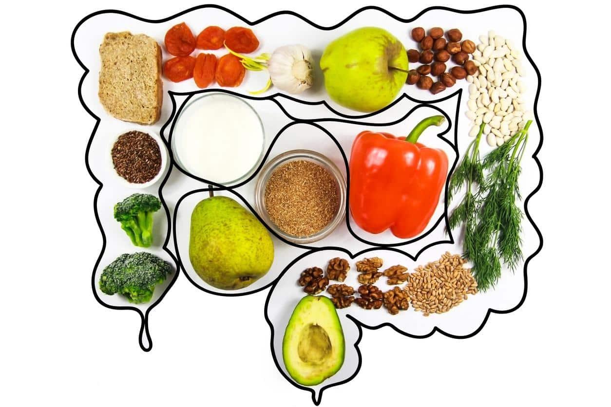 Alimentos que soltam o intestino - quais são e como agem no organismo