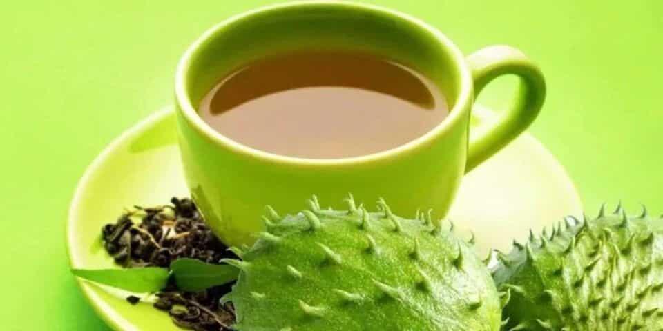 Chá de graviola, para o quê serve? Benefícios no corpo e receita