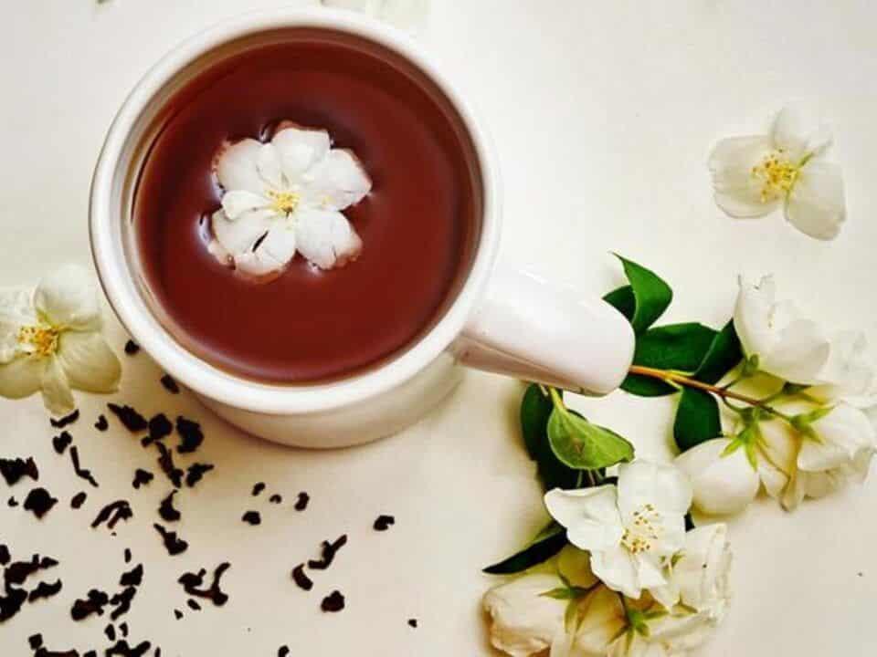 Chá de jasmim – Os benefícios do chá da flor de jasmim para a saúde