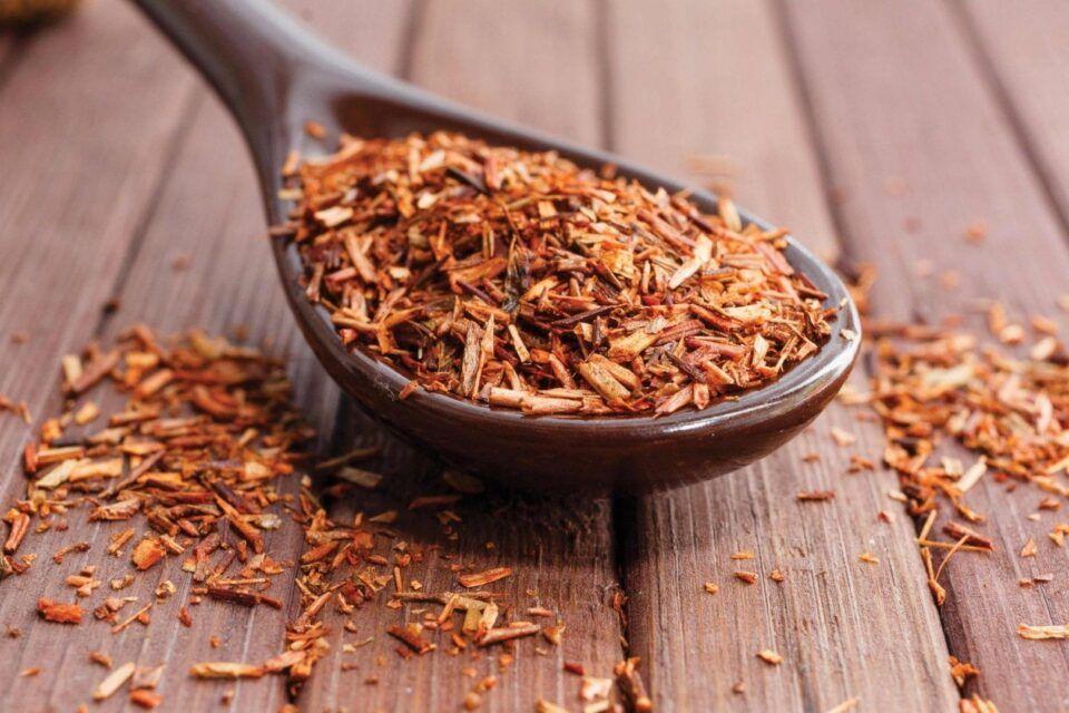Rooibos, o que é? Benefícios e como fazer o chá do arbusto sul-africano