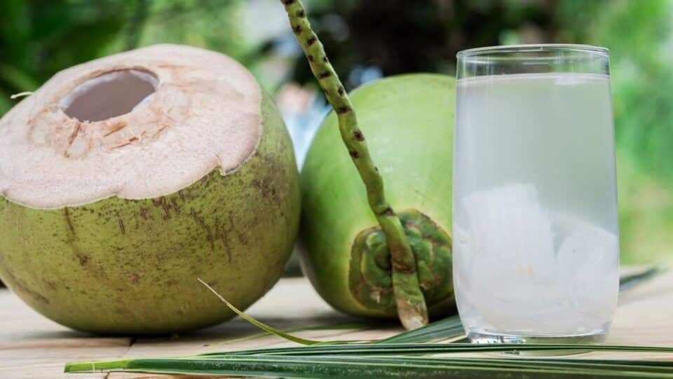 Água de coco – Conheça os vários benefícios do líquido para a sua saúde