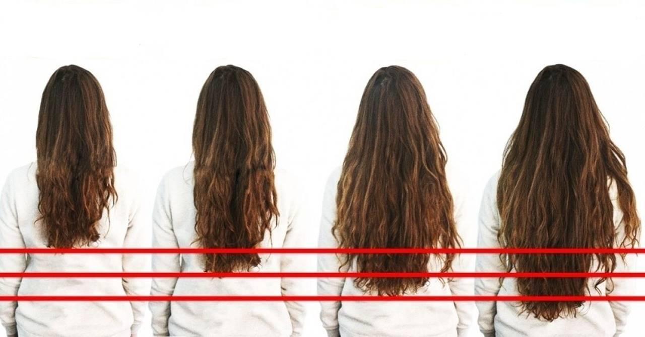 crescimento do cabelo ao longo do tempo