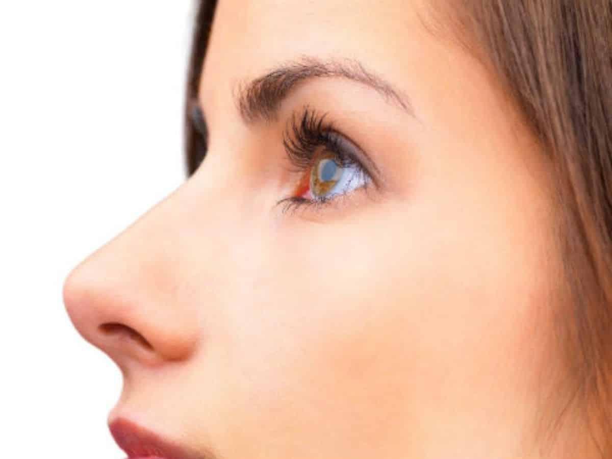 Tipos de nariz