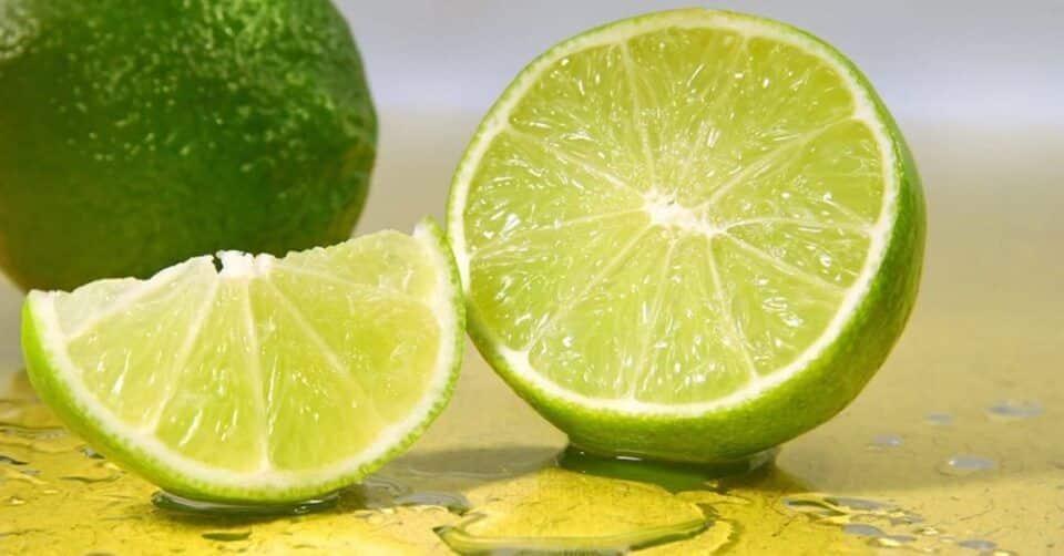 Limão na geladeira – Como guardar, conservar e tempo de consumo