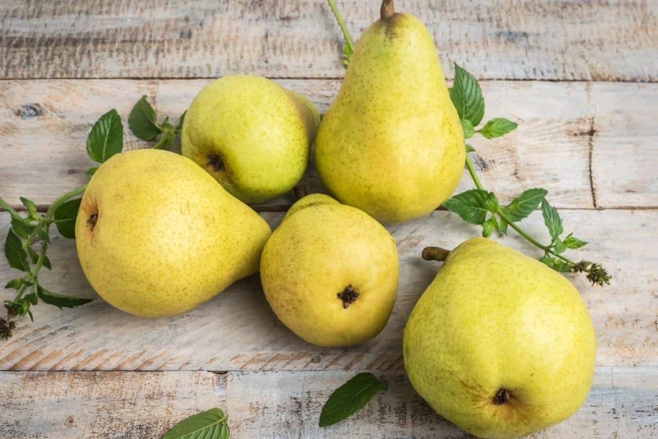 frutas peras