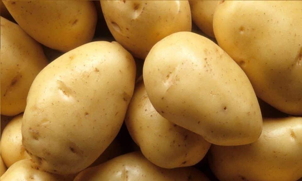 Batatas, como fazer? Dicas de receitas e benefícios para a saúde