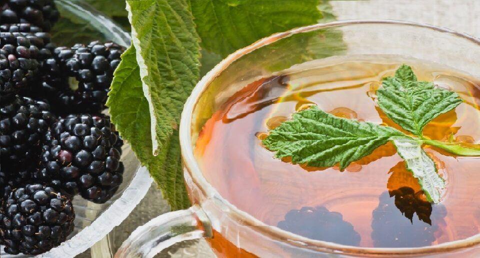 Chás para menopausa – 6 opções naturais para aliviar os sintomas