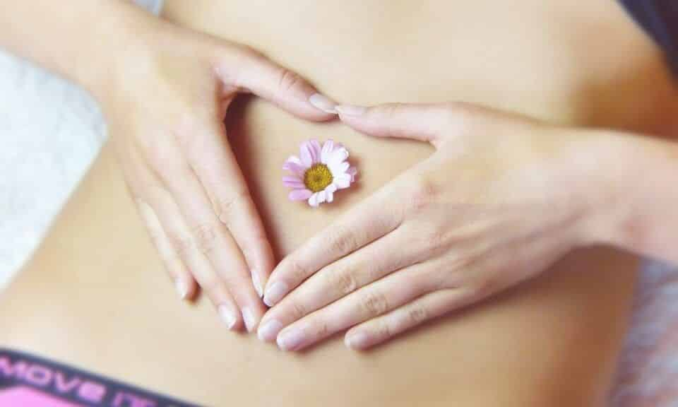 O que é ovulação? Como ocorre, monitoração e período fértil