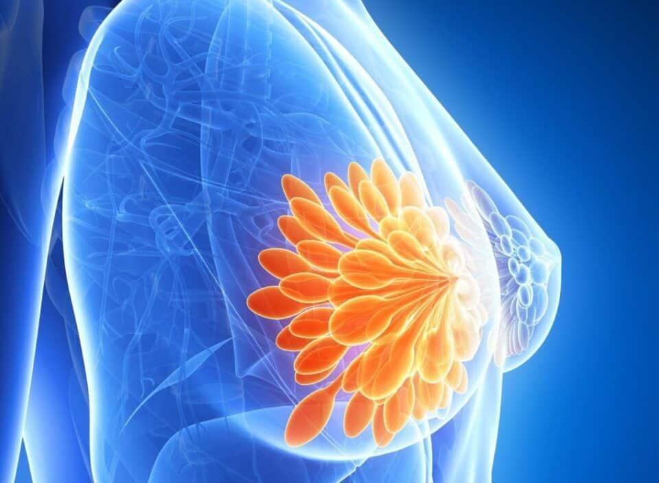 O que é prolactina? Identificação do hormônio e tratamentos