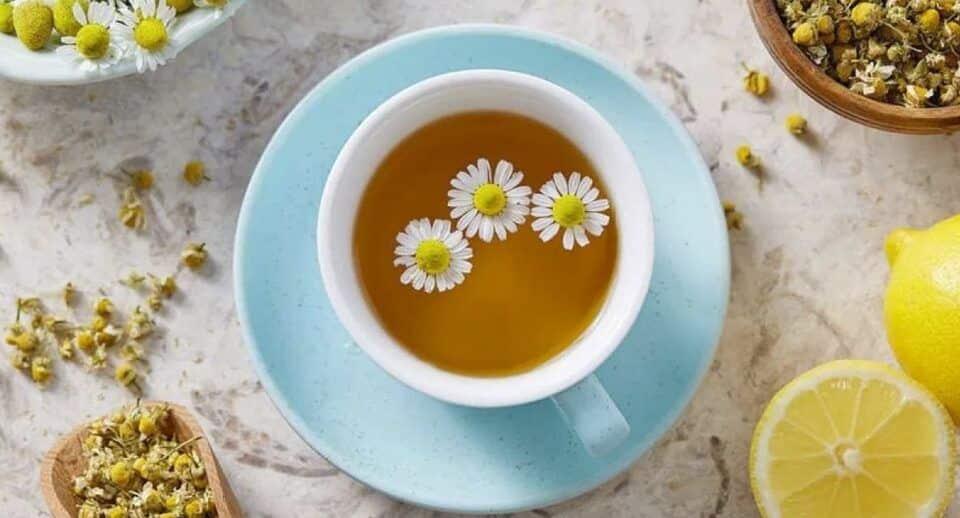 Benefícios do chá de camomila para a saúde e bem estar