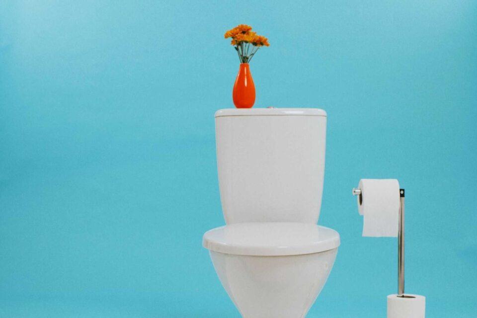Como desentupir vaso sanitário – Soluções práticas para usar no dia a dia