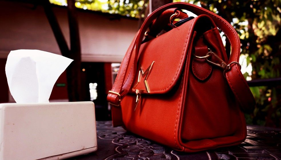 Como limpar bolsa de couro? Conservação