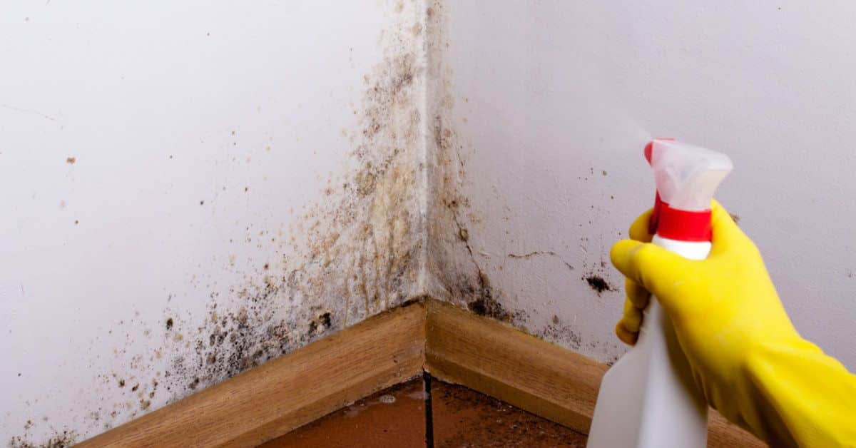 Como tirar mancha de parede – 7 dicas para a limpar paredes