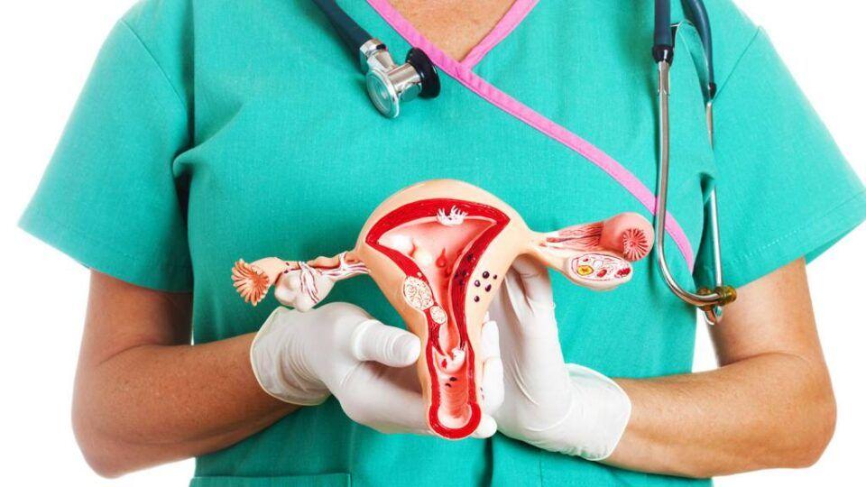 O que é histerectomia? Tipos, antes e depois da cirurgia + riscos
