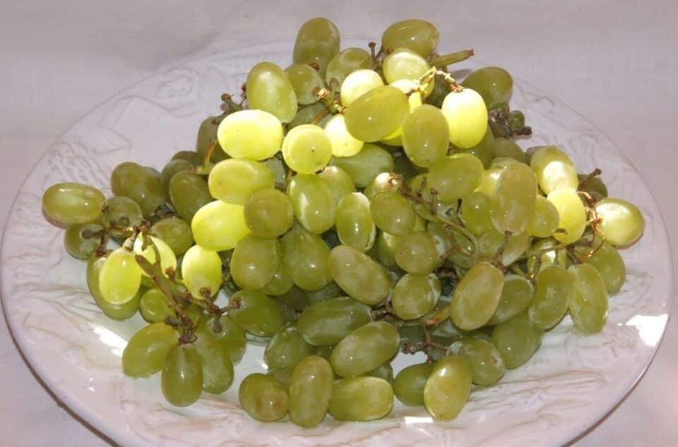 como fazer uva passa dicas para desidratar sua propria fruta em casa 1 960x633 - Cómo hacer pasas - Consejos para deshidratar tu propia fruta en casa