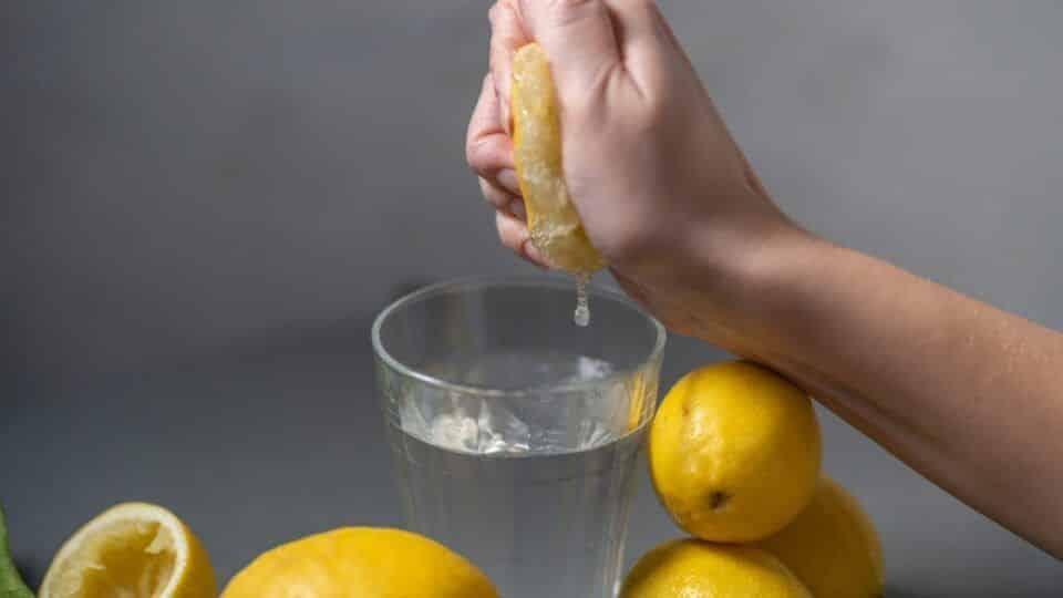 como fazer uva passa dicas para desidratar sua propria fruta em casa 3 960x540 - Cómo hacer pasas - Consejos para deshidratar tu propia fruta en casa