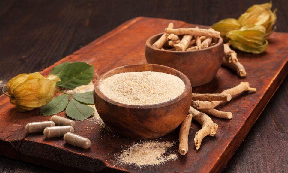 Ashwagandha, o que é? Benefícios da erva medicinal para a saúde