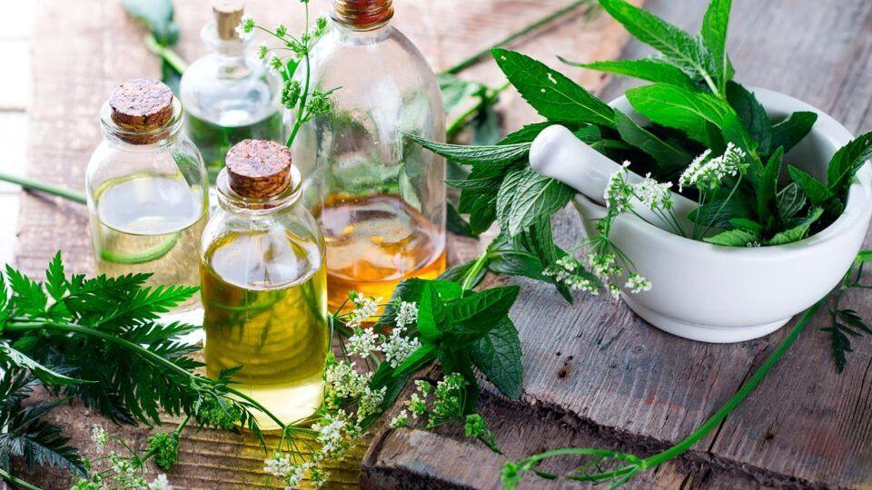 Banho de ervas – Tipos, como fazer, ervas mais utilizadas e receitas