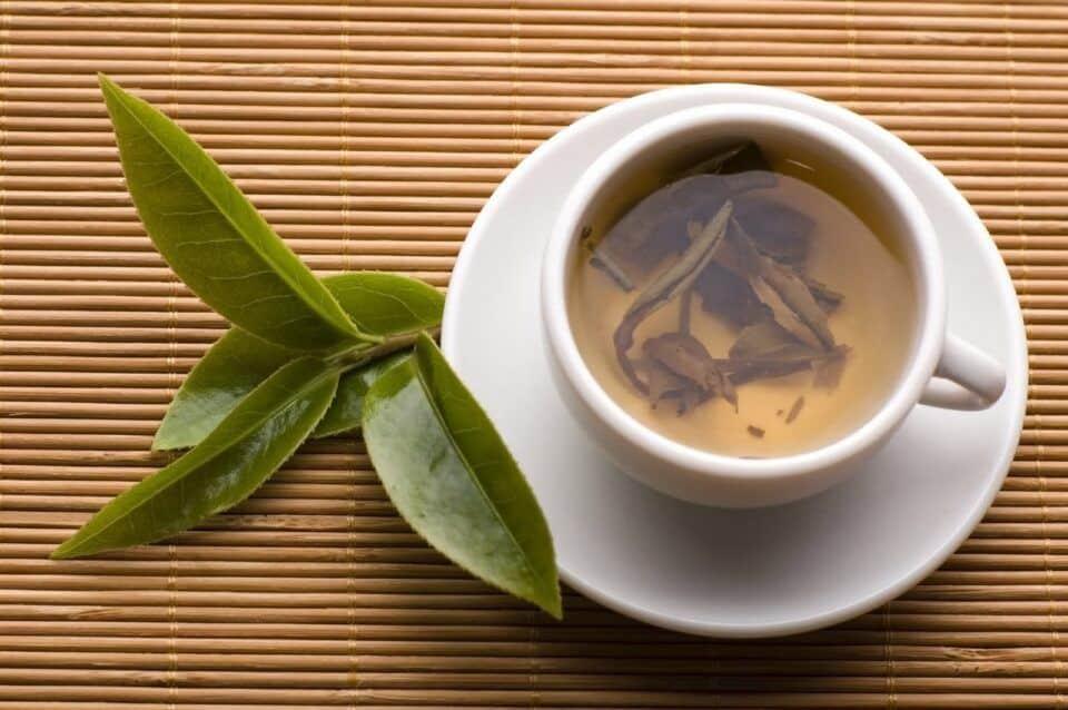Chá de oliveira – Principais benefícios da bebida para a saúde