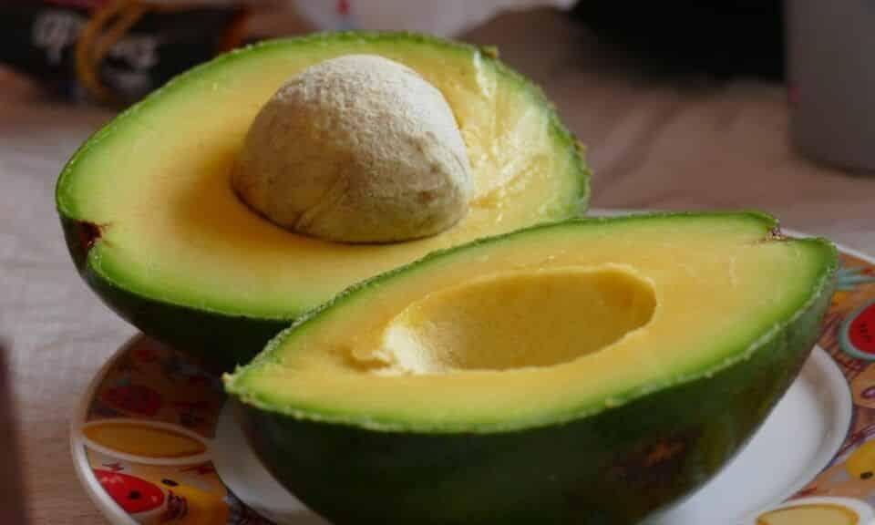 Máscara de abacate – Benefícios da fruta + receitas