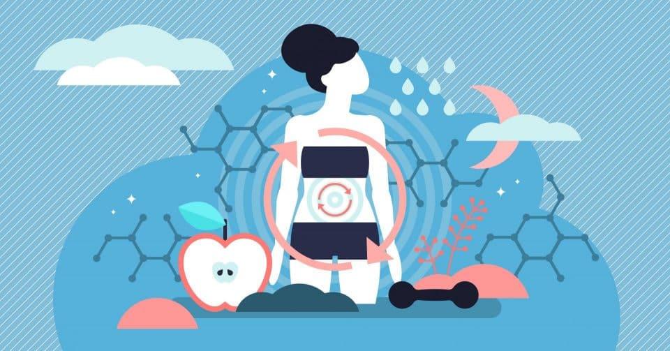 Metabolismo lento e ganho de peso – O que influencia e como acelerar